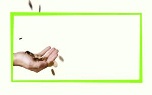 Как быстро выплатить кредиты - источники дохода